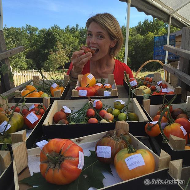 Le conservatoire de la tomate à Landiras