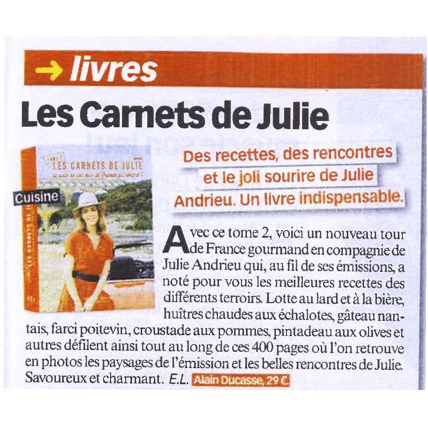 Les Carnets de Julie, le livre