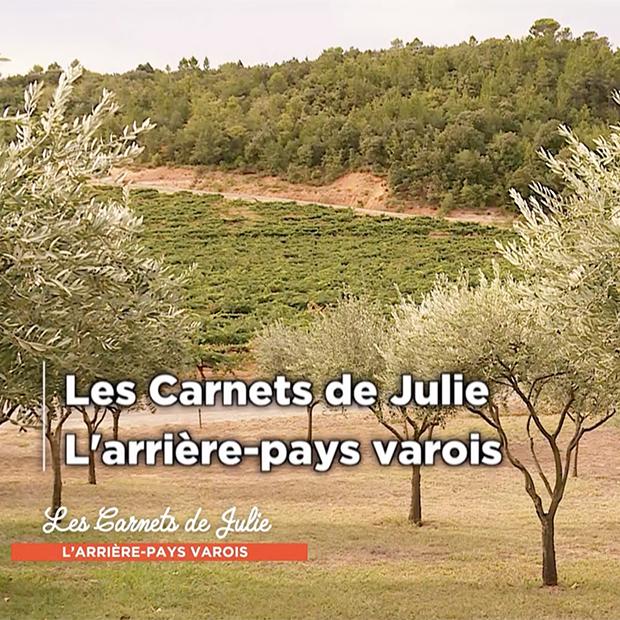 L'ARRIÈRE-PAYS VAROIS