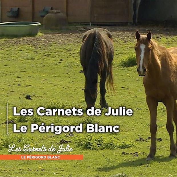 LE PÉRIGORD BLANC