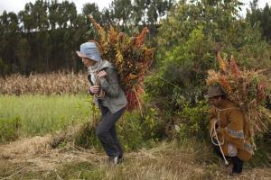 Julie Andrieu - Pérou et quinoa
