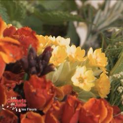Les saveurs des fleurs – 21 mai 2016