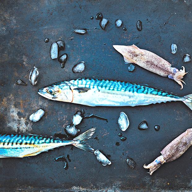 Menu marin pour été iodé