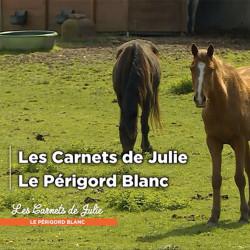 LE PÉRIGORD BLANC – 3 novembre 2018